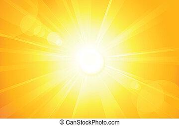 brillante, vector, sol, con, estallo lente