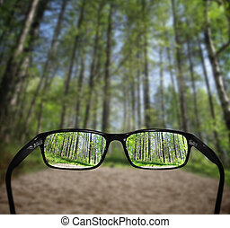brille, anblick-konzept, wald