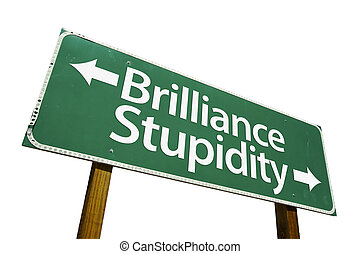 Brilliance & Stupidity road sign isolated on a white background. Contains Clipping Path.