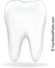 Tooth - Brilliant Tooth, Isolated On White Background,...