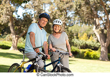 bringák, párosít, -eik, öregedő