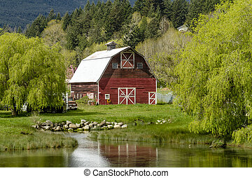 Little red barn reflecting in small pond surrounding by weeping willow trees in rural coastal setting along Pacific Coast Highway 101 on sunny spring morning