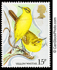 UNITED KINGDOM - CIRCA 1979: A used postage stamp printed in Britain celebrating the Centenary of the Wild Bird Preotection Act showing Yellow Wagtails, circa 1979
