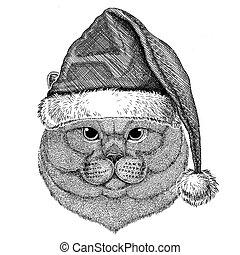 Brithish noble cat wearing christmas hat New year eve Merry...