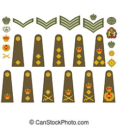 Epaulets, military ranks and insignia. Illustration on white background.
