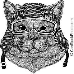 British cute cat with motorcycle helmet. Vintage motorcycle...