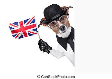 british dog banner - british dog with black bowler hat and...