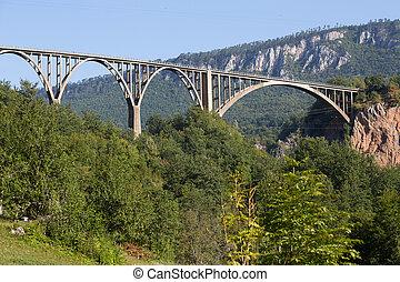 bro, är, a, konkret, valv överbrygg, över, den, tara, flod, in, nordlig, montenegro