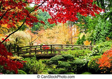 bro, in, a, trädgård