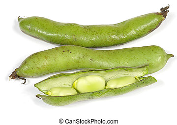 broad beans isolated
