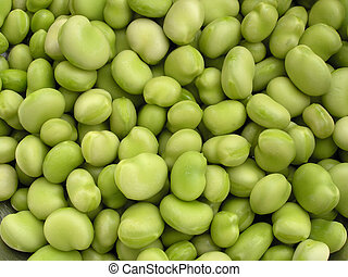 Broad beans - Freshly shelled broad beans.