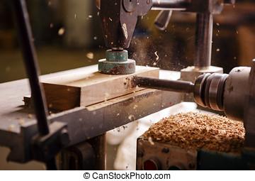 broca, quando, trabalhando, em, carpintaria