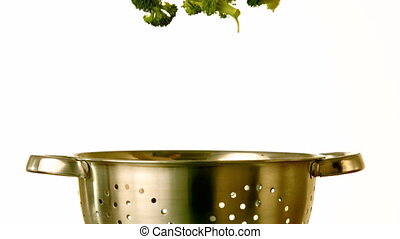 Broccoli falling into colander on white background in slow...