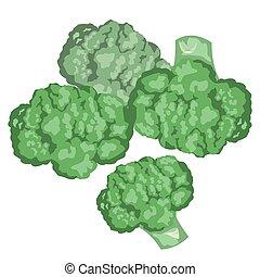 broccoli. Healthy lifestile - Green broccoli on a white...