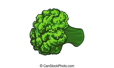 Broccoli icon animation best object on white background