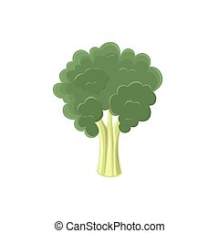 Broccoli icon isolated on white background.
