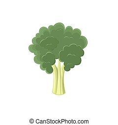Broccoli icon isolated on white background.