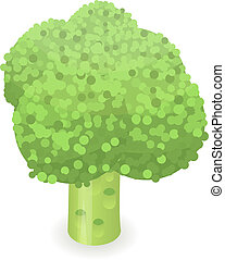 Broccoli icon, isometric style