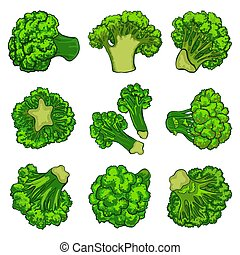 Broccoli icon set, cartoon style
