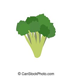 Broccoli isolated. Greens on white background. Broccoli sprouts. Useful green vegetable
