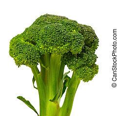 Broccoli on white background.