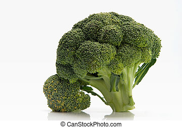 broccoli - fresh broccoli over white background
