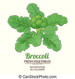broccoli vector isolated - broccoli plant vector isolated on...