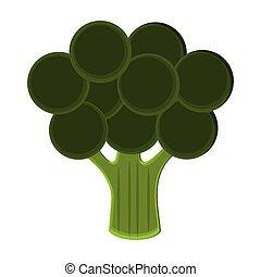 Broccoli vegetable food symbol vector illustration graphic...