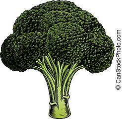 Broccoli vintage woodcut illustrati