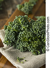 broccolini, crudo, verde, orgánico