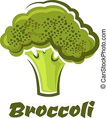 broccolo, fresco, cartone animato, verdura verde, sano