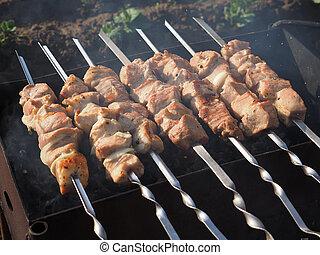 brochettes, kebabs shish