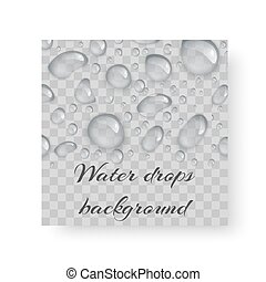 Brochure with drops of dew
