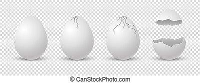 Brocken eggs. Crack eggshell. realistic break white shell on...