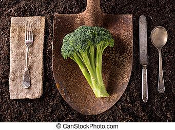 Brocolli - Organic farm to table healthy eating concept on ...
