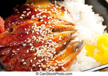 broiled eel on rice. unagi - broiled eel on rice, unagi. ...