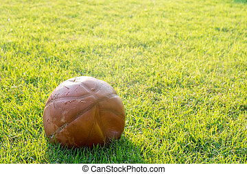 broken basketball ball on a grass lawn in a morning.