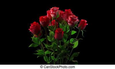 Broken bouquet of roses