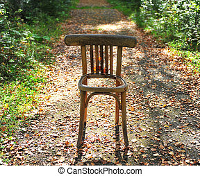 Broken chair on the road in forest
