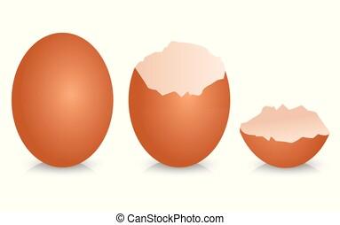 Broken egg shell vector design illustration