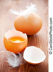 Broken egg with brown eggshell and feathers on the wooden...