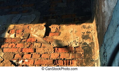 Broken glass bottle on old brick wall. Slow motion video. -...