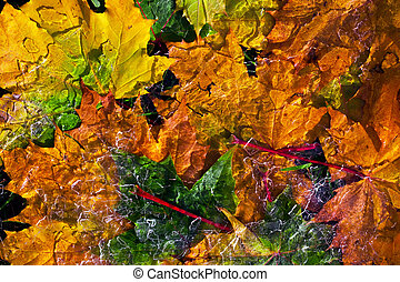 ice on a background of autumn leaves