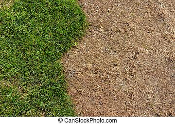 broken lawn