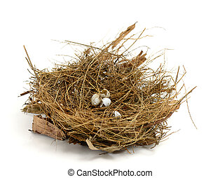 Broken nest egg