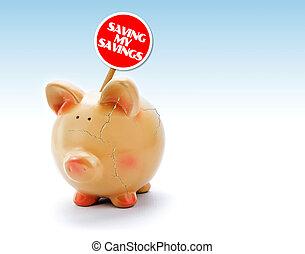 "Broken piggy bank with cracks and ""Saving my Savings"" tag"