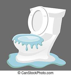 Broken Toilet Overflowing