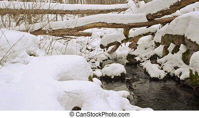 broken tree snow brook