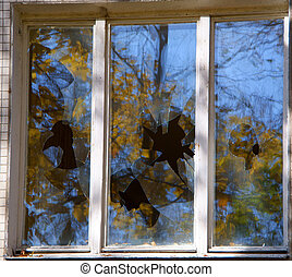 Broken windows of residential homes in close-up