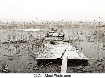 Broken wooden jetty in frozen lake with reeds